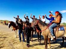 sept-2016-dakota-horses