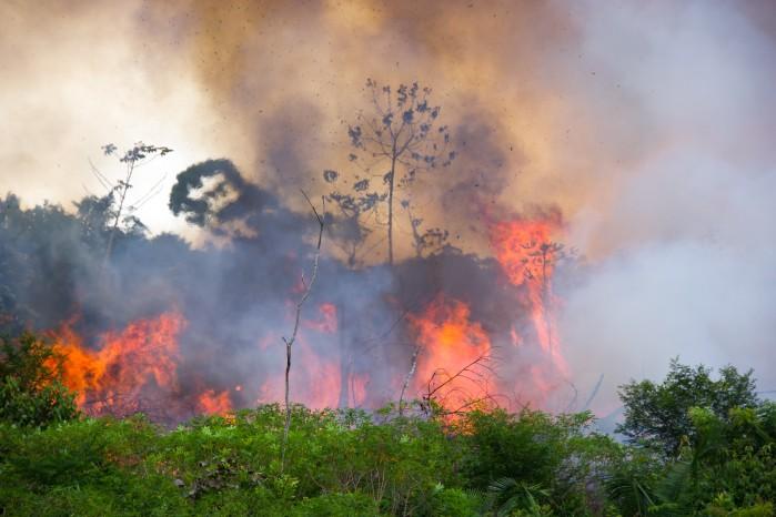 Sept. 2019 Amazon fire